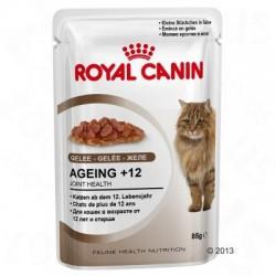 Royal Canin Ageing +12 in Gelei Kattenvoer