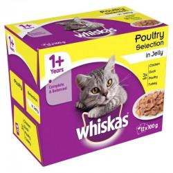 Whiskas 1+ kattenvoer in gelei 12 x 100 g